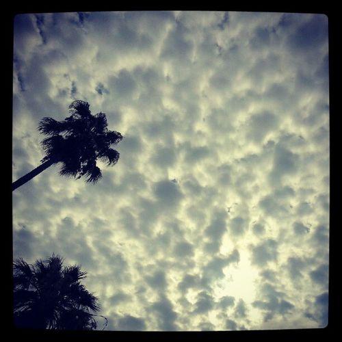 Questa mattina Cielo Nuvoloso ad Antibes