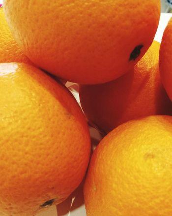 Blood Orange Orange - Fruit Peel Vitamin C Ripe Farmer Market Orange Tree Juicy