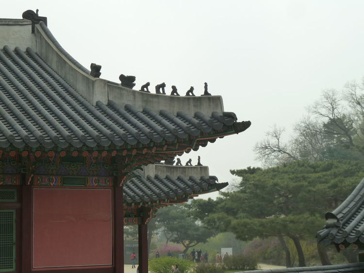 Changdeokgung Changdeokgongpalace Changdeokgung Palace Garden Koreanarchitecture Royalgardens Tree