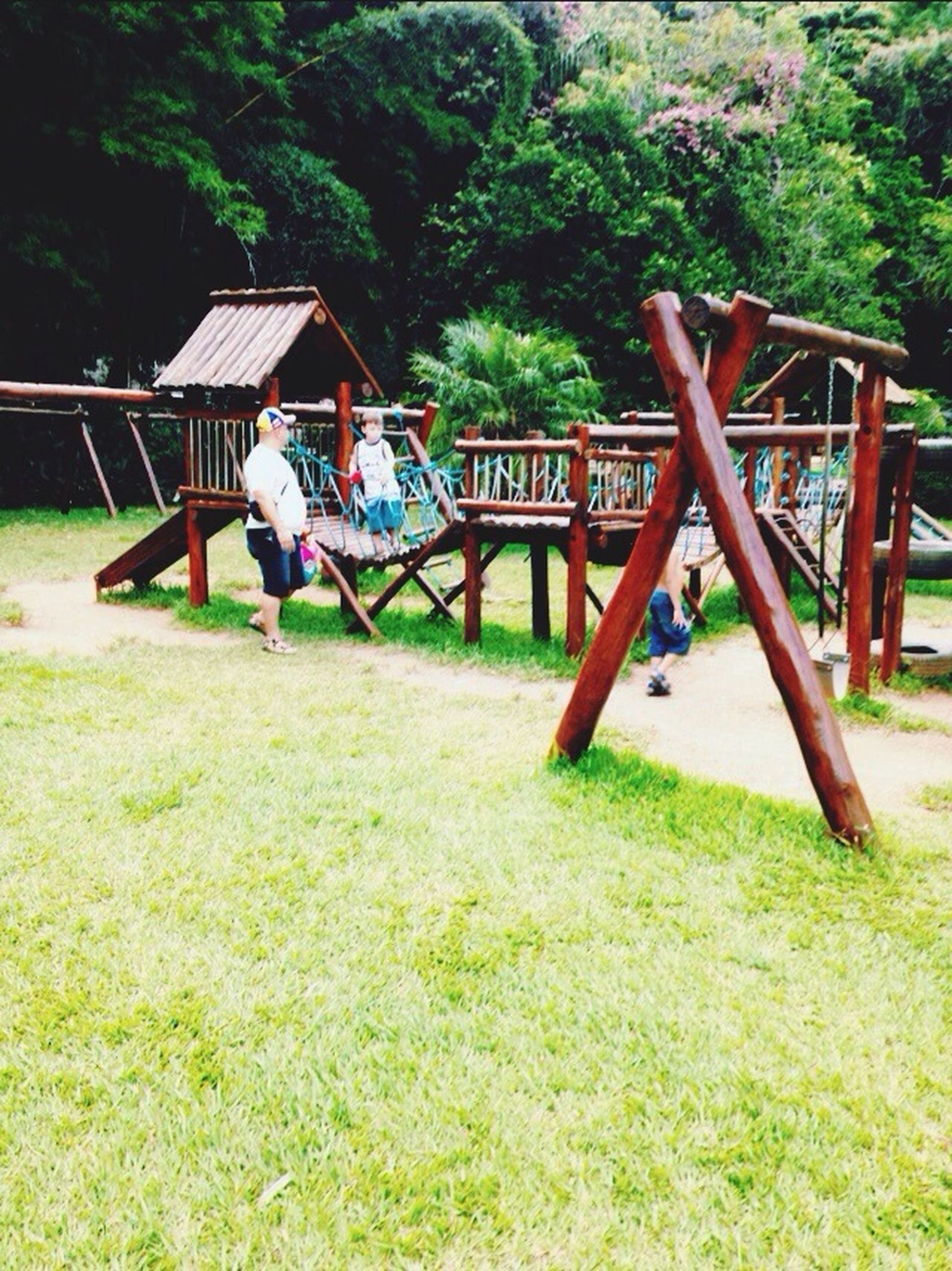 grass, tree, playground, park - man made space, built structure, wood - material, childhood, green color, bench, sunlight, absence, field, day, nature, chair, outdoors, grassy, swing, relaxation, growth