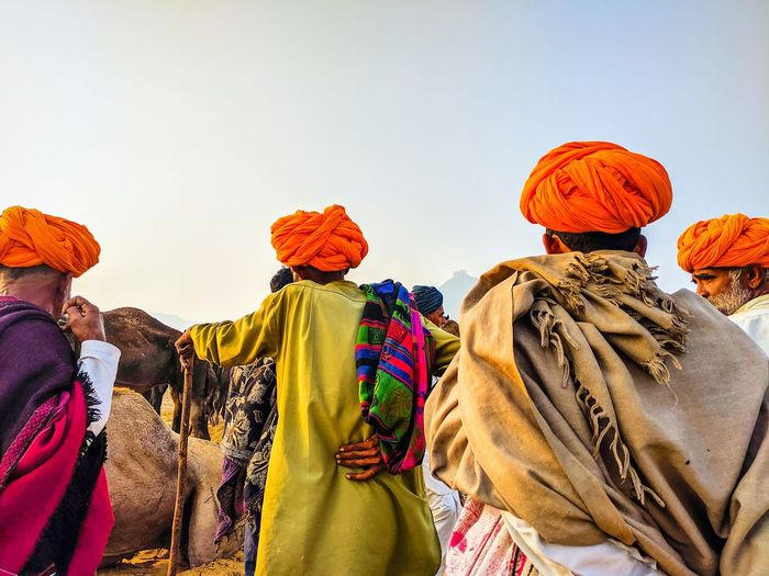 Camel traders negotiating on the prices of their camels. pushkar, rajasthan, india.