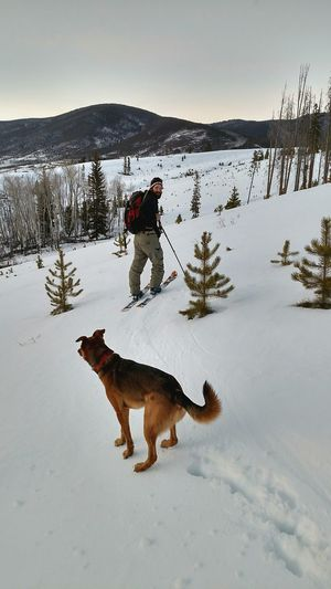 Here Belongs To Me Cross Country Skiing Manfriend  Dog❤ RockyMountainHigh Colorado