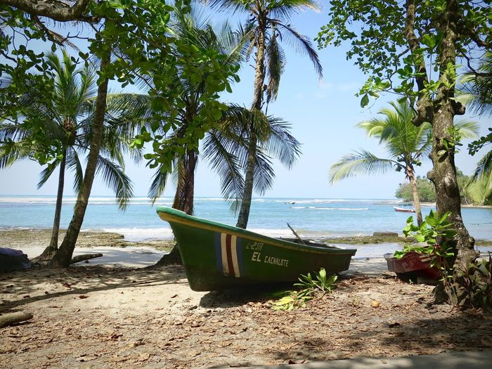 Beach Boat Carribean Costa Rica Palm Tree Sea Shore Travel Destinations Water
