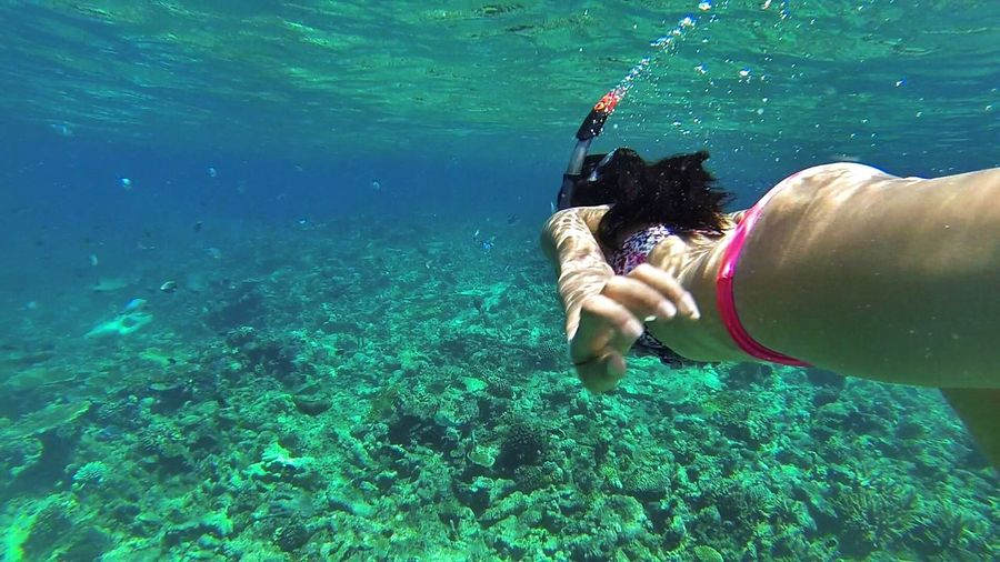 Side View Of Woman Snorkeling In Sea