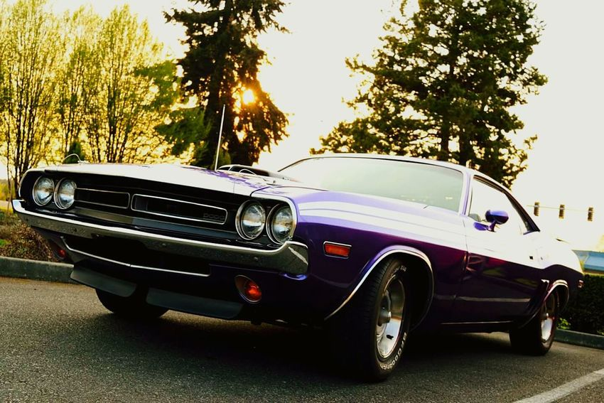 Muscle Cars Cars Sexycars Beuatiful Fast