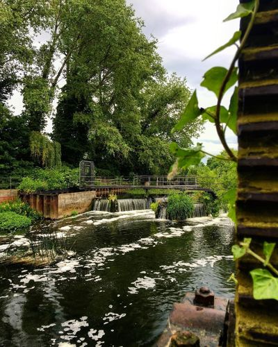 Tree Water Nature Green Color Fountain Waterfall Outdoors Motion No People Day Growth Beauty In Nature Scenics Built Structure Long Exposure Architecture Leaf Plant Tranquil Scene Park - Man Made Space EyeEm Best Edits London Picoftheday The Week Of Eyeem Oziref