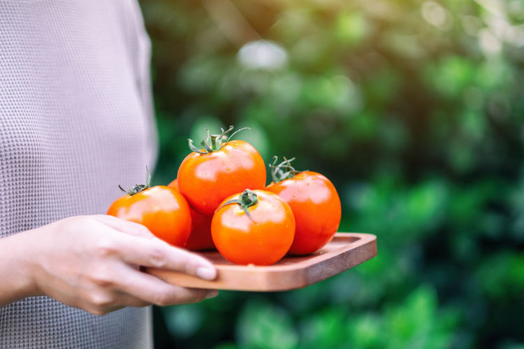 Close-up of hand holding tomato outdoors