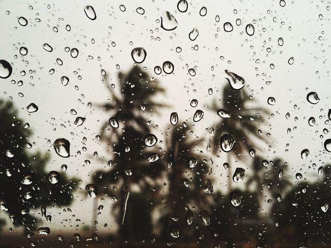 Artofrain Waterdrops Rain