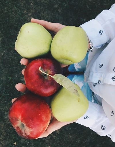 Fruit High Angle View Food Healthy Eating Freshness Close-up Apples Red Apple Green Apple Harvest