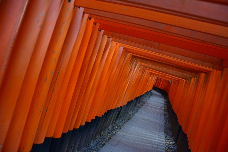 Torii Gates At Fushimi Inari