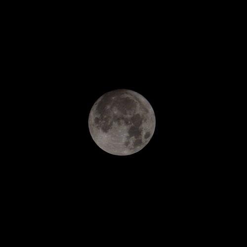 中秋の名月 Moon