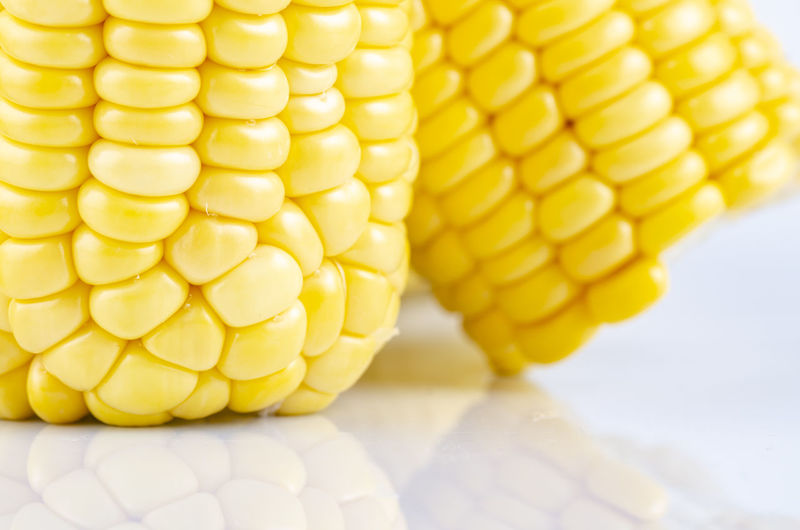 fresh raw sweet corn on the cob kernels over white background Corn Yellow Close-up Sweetcorn Food Food And Drink Corn On The Cob Vegetable Wellbeing No People Healthy Eating Indoors  Agriculture Freshness Crop  Still Life Focus On Foreground Nature Raw Food Snack
