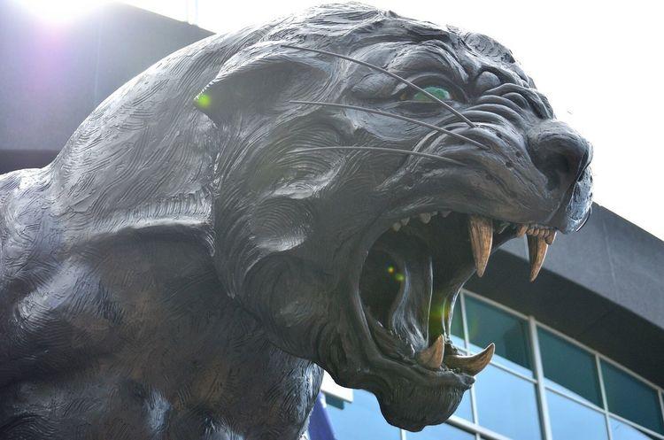 Statue Panthers Panther Black Sun