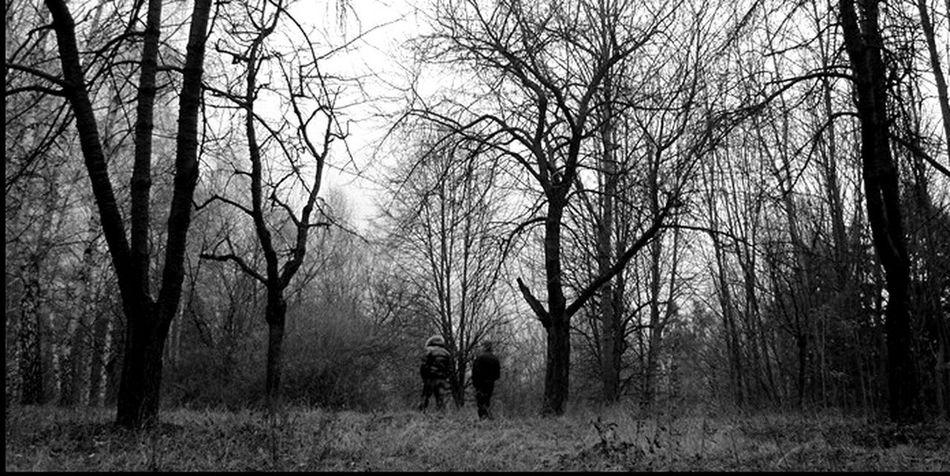 Trees Walk Walking Blackandwhite B&w Panorama Nature Black & White Winter Autumn
