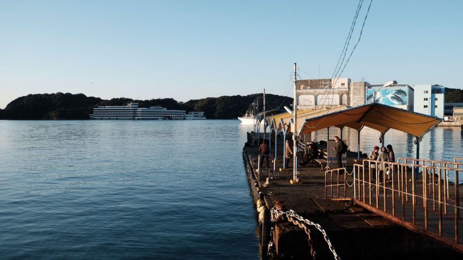過去最高重量450kgのマグロが揚がって賑わう勝浦漁港。 Eye4photography  Sea Water Day Clear Sky Nature