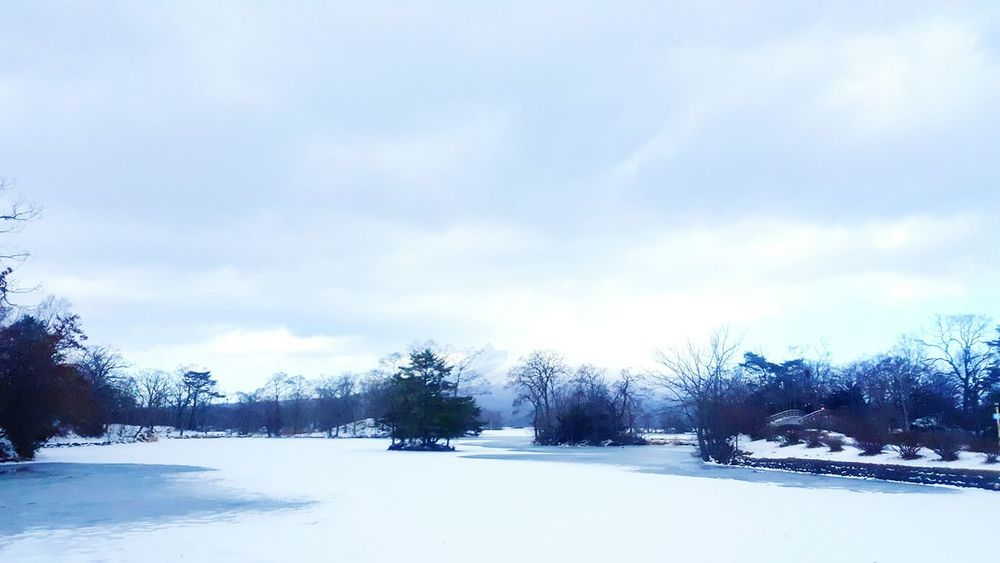 Blue Sky Coulds And Sky Water Cold Winter ❄⛄ No People Tree Nature White Color Snow ❄ Nature Photography Nature And Beauty Nice Views