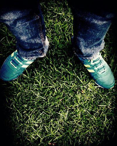 Shoe Jeans