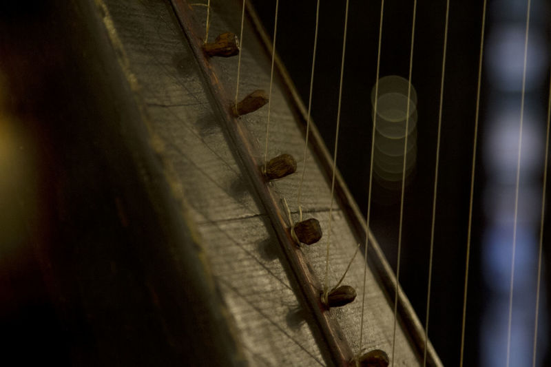 Music ARP Strings Sound Instrument Instrument Of Time Instrumentals Close-up Harp String Instrument