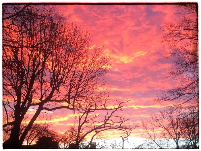 Sunrise In London Saint Margarets