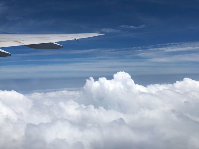 Cloud - Sky Sky Airplane Air Vehicle Beauty In Nature Scenics - Nature Flying Mode Of Transportation Aircraft Wing No People Day Nature Outdoors Aerial View Transportation Mid-air Cloudscape Tranquil Scene White Color Tranquility