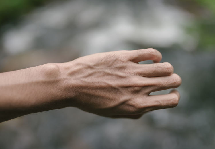 Close-up of cropped hand