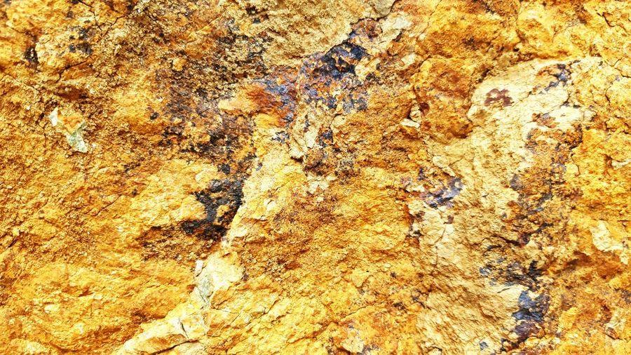Full frame shot of lichen on rock
