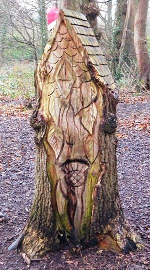 The magical fairy world found deep within Fullarton Woods, Troon, South Ayrshire, Scotland. Fairies Magical Scotland Carving In Wood Close-up Cottage Day Forest Fullarton Woods House Mysterious Mystical Nature No People Outdoors South Ayrshire Tree Tree Trunk Troon Woodlands