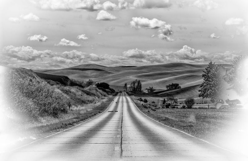 Country road Country Road Leading Lines Running Away Driving The Back Roads The Palouse Black & White