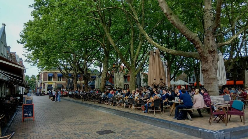 People in Delft, Netherlands Lunch Beer Freedom First Eyeem Photo Chill Forset Tree Men City Women Sitting Architecture Sky Building Exterior Built Structure Outdoor Cafe National Icon Branch Sidewalk Cafe Migrating