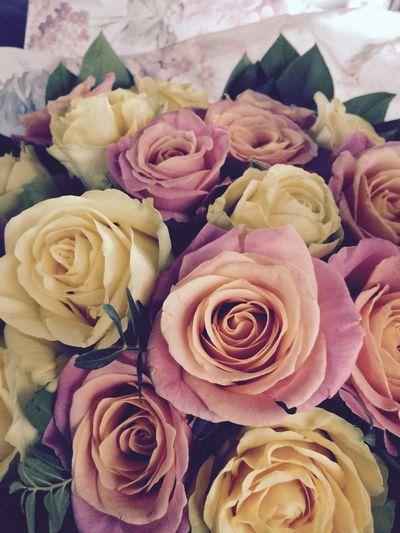 Blumen Geburtstag Feiern Bad Weather
