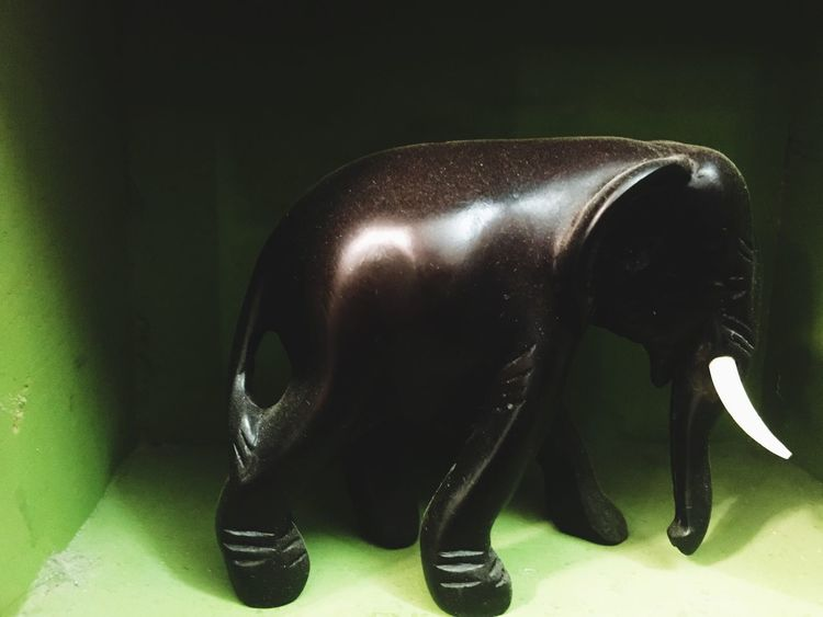 Elephent Black Elephant Green Background Statue Art