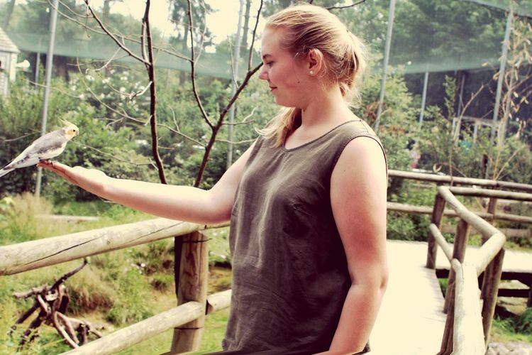 One Animal One Person Outdoors Young Women Nature Bird Standing Day Free