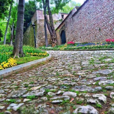 Istanbul Gulhane Park Koru eminonu fatih bahar spring nature manzara turkey turkiye