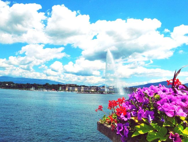 Geneva Geneve Hanging Out Hello World Sunny Day Lac Léman Lake Leman Lake Switzerland Switzerland Swiss Alps Swiss Jetdeau Colorful Water_collection Blue Sky Sky And Clouds Eye4photography  Eyemphotography Check This Out
