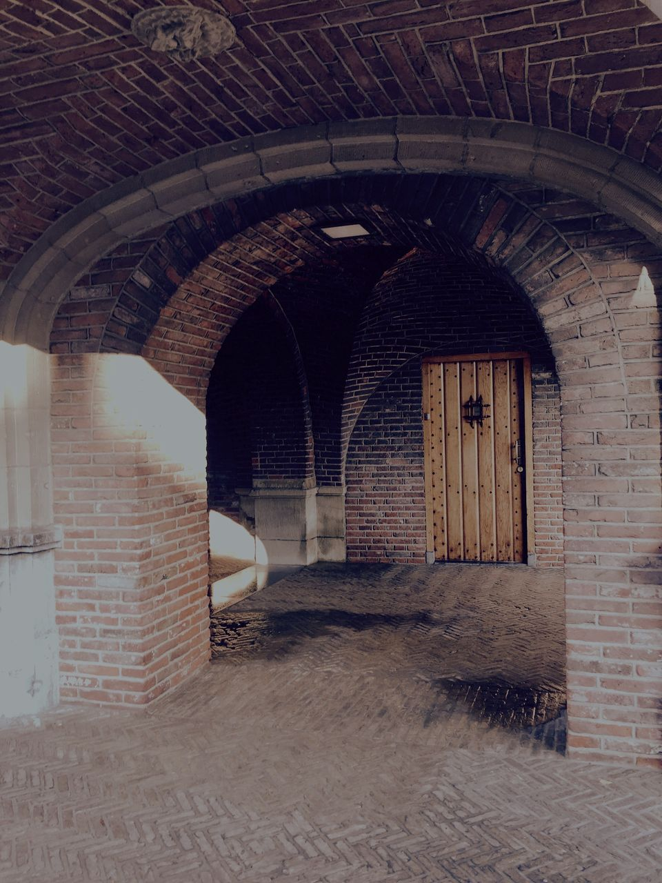 arch, architecture, built structure, brick wall, no people, indoors, day, animal themes