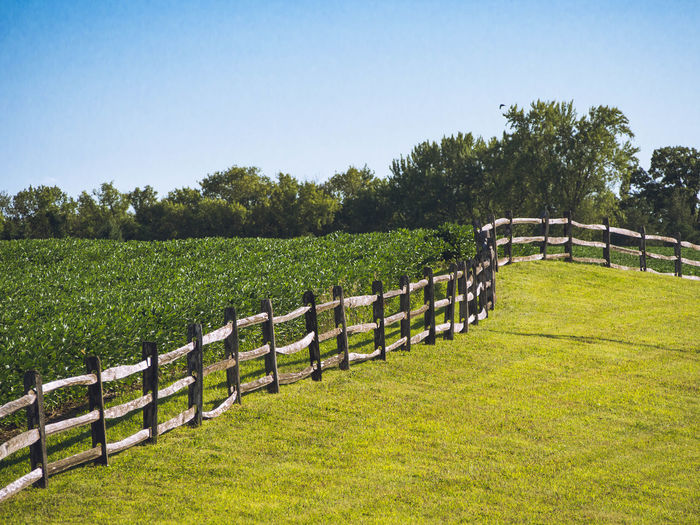 This rustic wooden fence marks the edge of the crop field. Beauty In Nature Blue Day Farming Fence Fences Field Grass Grassy Green Green Color Growth Idyllic Landscape Lush Foliage Nature No People Non-urban Scene Outdoors Remote Rural Scene Scenics Sky Tranquil Scene Tranquility