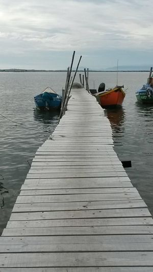 Doca Docks Deck Pier Wood Boat Fishing Fish Sea Cais