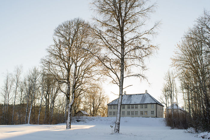 Architecture Bare Tree Beauty In Nature Building Exterior Built Structure Cold Temperature Day House Nature No People Norway Norway🇳🇴 Outdoors Sky Snow Tree Winter Winter