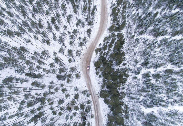 Aerial Shot Curve Drone  Latvia Nature Road Aerial Aerial View Car Curve Road Day Directly Above Dronephotography Forest Landscape Nature No People Outdoors Rally Rallycar Tree