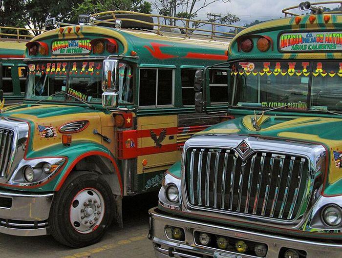 Guatemala Bus Schoolbus School Bus Bus Scolaires Couleur Color