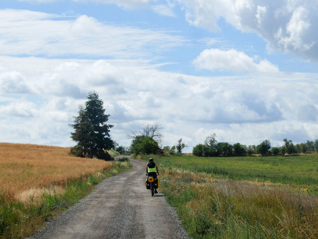 Adventure By Bike Bike Trip Travel Photography Beauty In Nature Bike Packing Bike Touring Cloud - Sky Day Field Full Length Grass Growth Landscape Lifestyles Men Motorcycle Nature One Person Outdoors People Real People Rear View Riding Road Rural Scene Scenics Sky The Way Forward Transportation Tree Wilderness Adventure