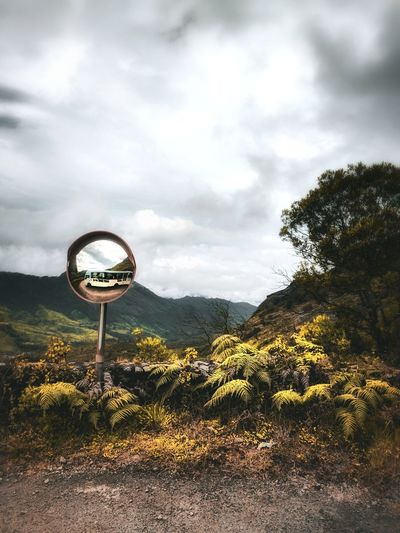 Road mirror by plant against sky