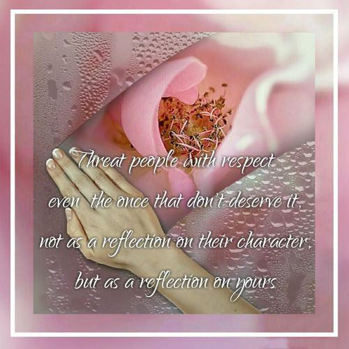 Canon D30 Semi Professional Camera Rosé Sayings Quotes Poems Wise Words Pink On Pink Blend Collage Blend Collage App