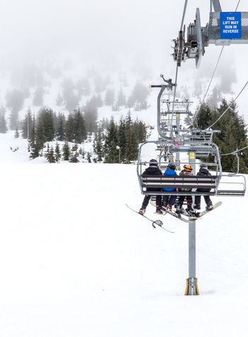 Snow Day on Cypress Mountain Adventure Beauty In Nature Cold Temperature Day Men Mode Of Transport Nature Outdoors Overhead Cable Car People Real People Scenics Ski Holiday Ski Lift Skiing Sky Snow Transportation Tree Vacations Weather White Color Winter