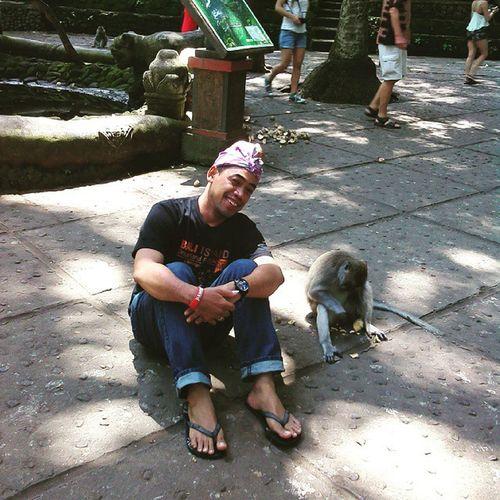 Traveling Forestmonkey Ubud Baliisland