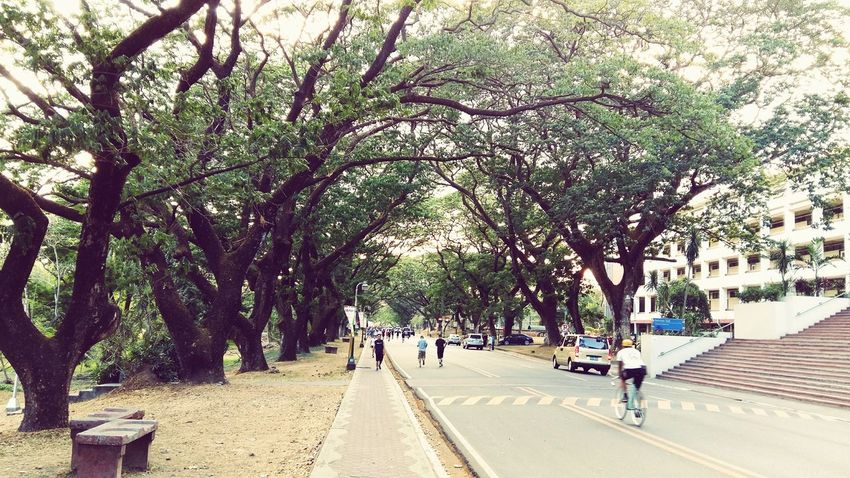Mi alma mater University Cityscapes Philippines Landscapes