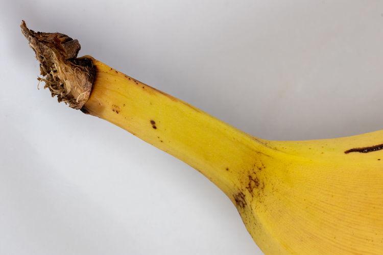 Close-up of bananas on white background