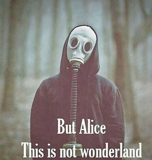 Alice In Wonderland Mask Gas Allucinated Illusion Wonderland Not Likeforlike Followme