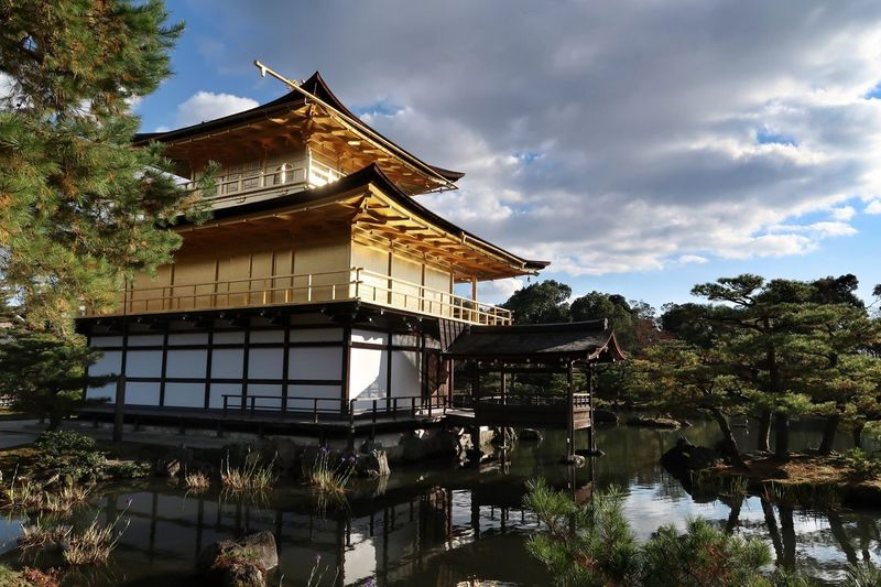 Kyoto Gold Japan Photography Japan Golden Pavilion  Architecture Built Structure Building Exterior Tree No People Outdoors Sky