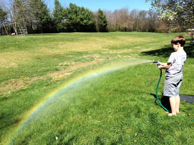 a rainbow arcs colorfully over a grassy yard. springtime fun. Arc Boy Bucket Cool Field Fun Garden Hose Grass Grassy Green Color Growth Hose Hosepipe Rainbow Nature Nature Photography In Motion Rainbow Shadow Spectrum Sun Sunlight Sunny Tree Water Live For The Story